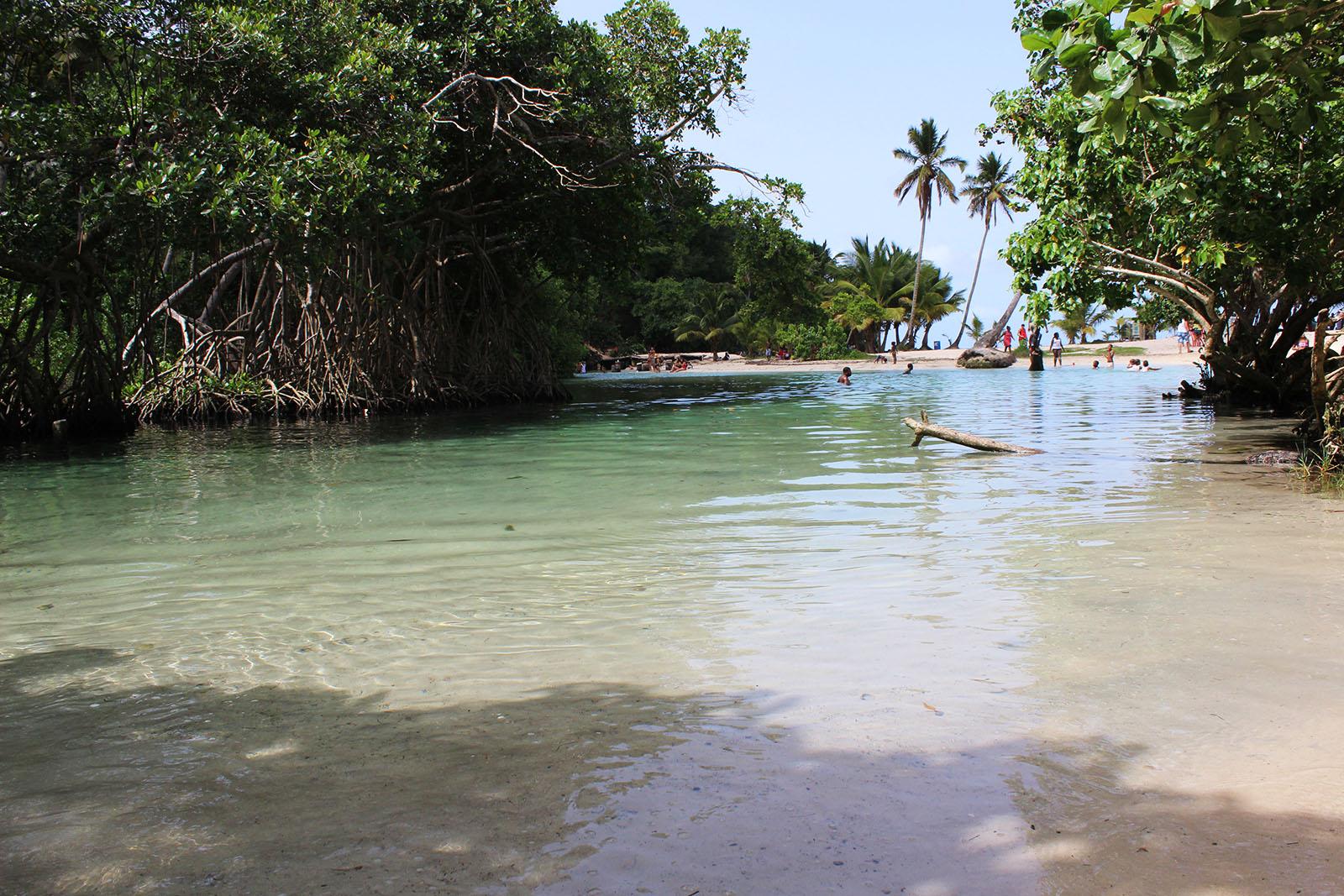 Playa Rincón de las Galeras_17