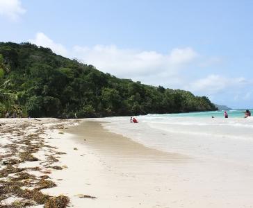 Galería: Playa Rincón de las Galeras